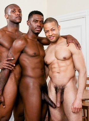 Wild Gay Rex Cobra,Andre Donovan,Krave Moore,