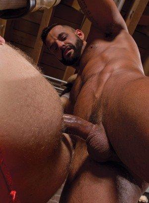 Hunky Gay David Benjamin,Brian Bonds,