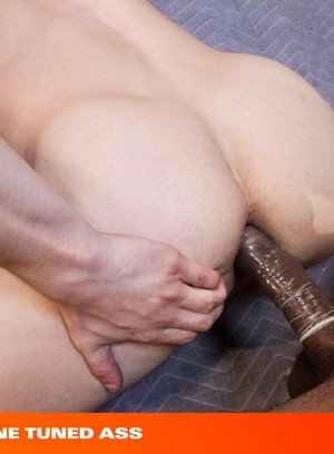 Horny Colt Rivers,Aaron Reese,