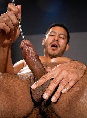 Naked Gay Boygravy,
