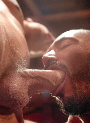 Sexy Guy Alessio Romero,Shane Frost,