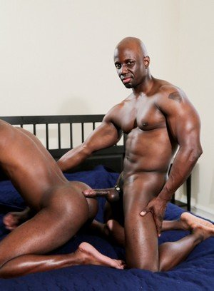 Horny Gay Jay Black,Bam Bam,