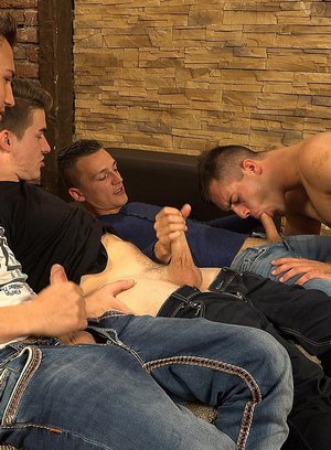 Wild Gay Dusan Polanek,Martin Polnak,Alan Carly,