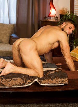 Wild Gay Leo Lombar,
