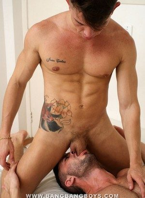 Handsome Guy Andy Star,