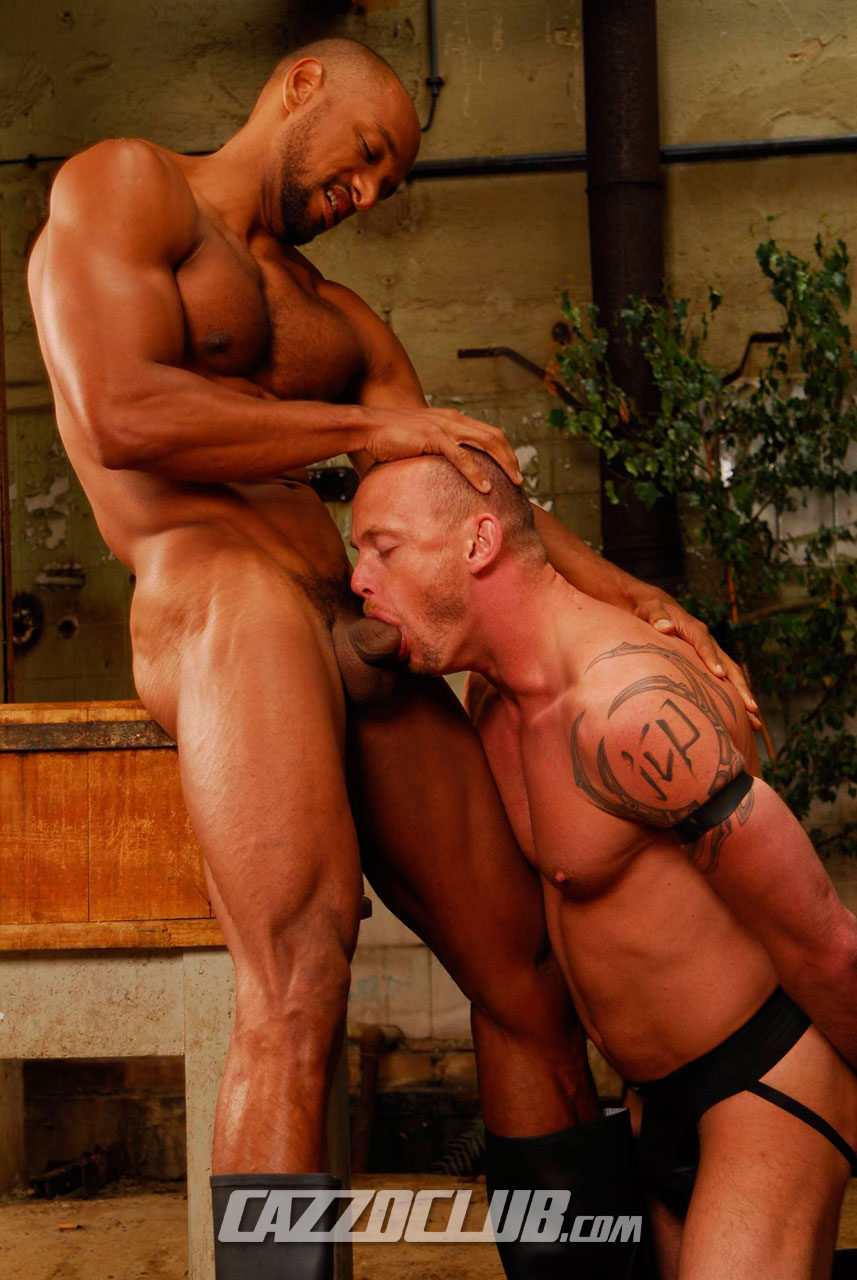 Gay Male Porn Galery Archives