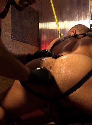 Hot Boy Toro Tyrk,