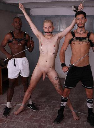 Cute Gay Ollie Blue,River Wilson,Alexis Clark,