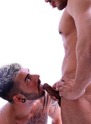 Wild Gay Aday Traun,