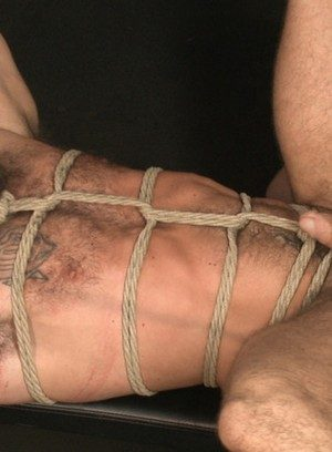 Horny Gay Connor Maguire,Aarin Asker,