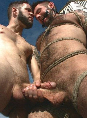 Hot Gay Wolf Hudson,Chris Harder,