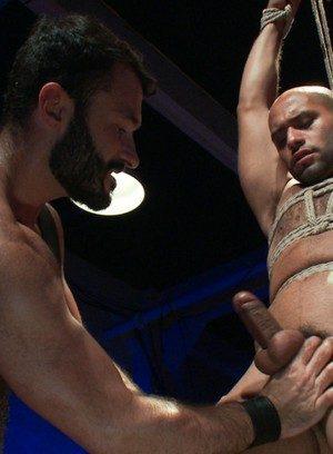 Hot Gay Wilfried Knight,Leo Forte,