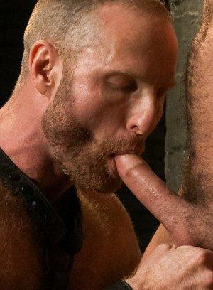 Hot Gay Alan Ladd,Jessie Colter,