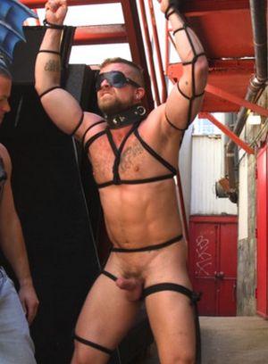Naked Gay Max Cameron,Jay Austin,