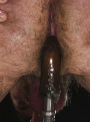 Naked Gay David Emblem,