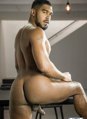 Wild Gay Dato Foland,