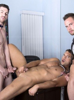 Horny Rocco Reed,Chris Bines,Andrew Stark,
