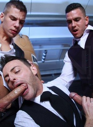 Handsome Guy Riley Tess,Paul Walker,