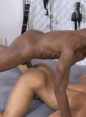 Cock Hungry Dude Trelino,Chase Coxxx,